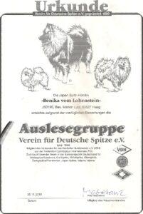 Urkunde Auslesegruppe Verein für Deutsche Spitze e.V.
